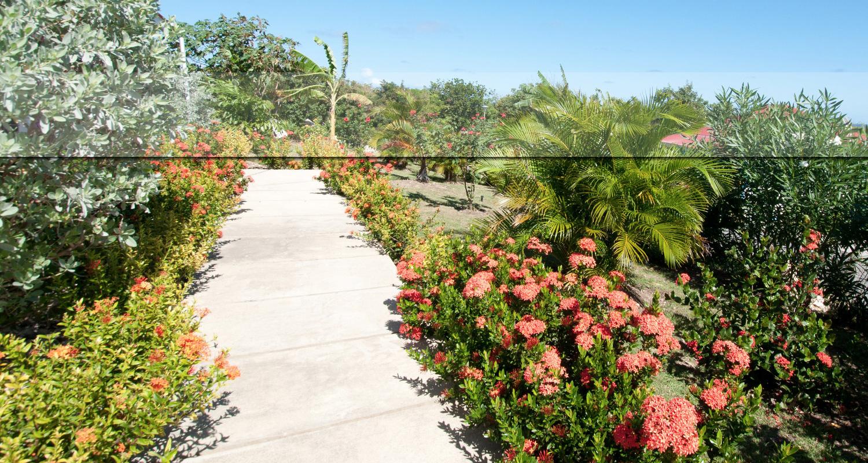 Le jardins des 4 epices location r sidence villa for Jardin des 4 epices marie galante